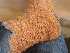 Molly socks