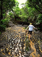 Slightly Muddy Trail