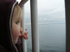 The Ferry Trip