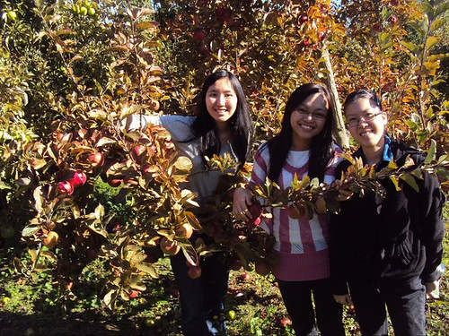 Melissa & friends apple plucking