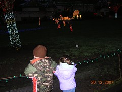 zoo lights 1