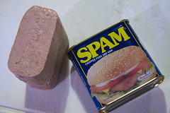 Spam Fritters!