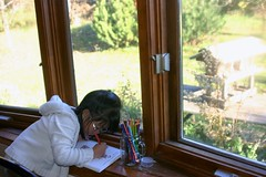 Olivia Drawing in her Nature Journal