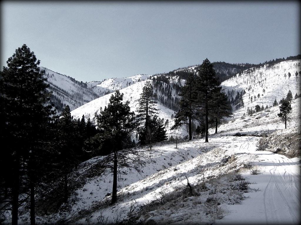 Ash Canyon