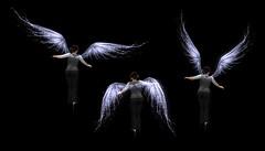 Angel style splash wing prototype by Jen Shikami