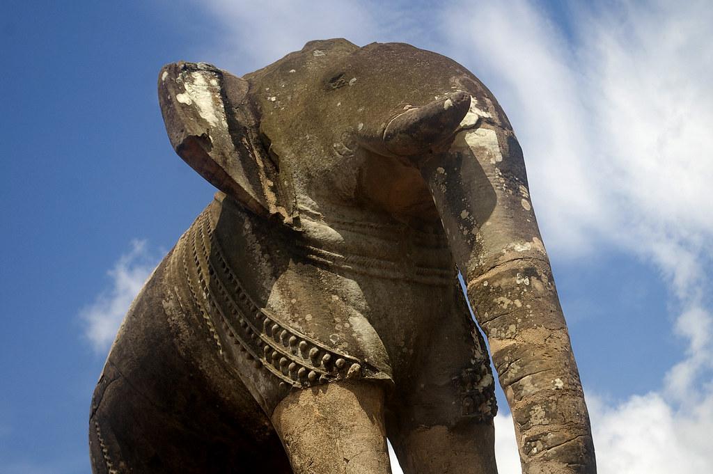 guardian elephant
