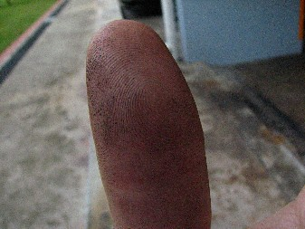 Fingers_Grubby_20071207_01x
