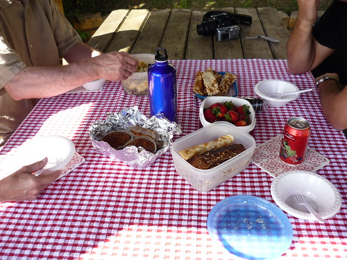 Our pic-nic in the mountains