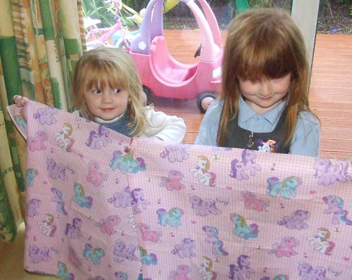 Pony Fabric Gift!