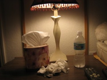 sick (03-06-08)