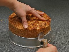 Shortcake 6