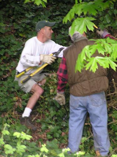 Al Removing Invasive English Ivy