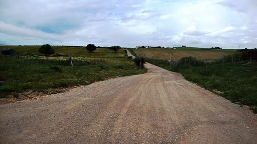 Cañada Real de Salinillas o Vega