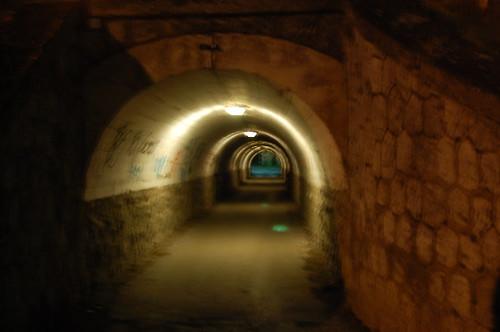 El tunel de los horrores