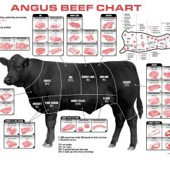 Beef Meat Diagram Baldor 3 Hp Motor Wiring Beefmap Jakelinks