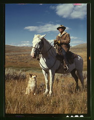 Shepherd with his horse and dog on Gravelly Ra...