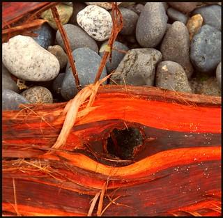 Driftwood & pebbles