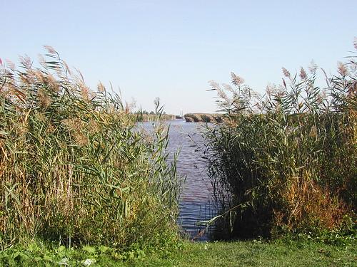 Neusiedler See)