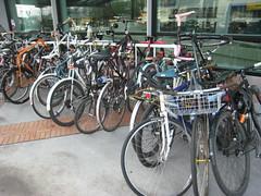 Full Racks in Portland