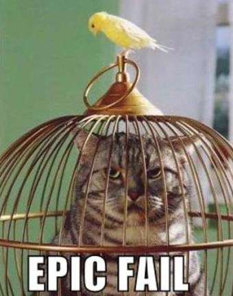 cat cage fail