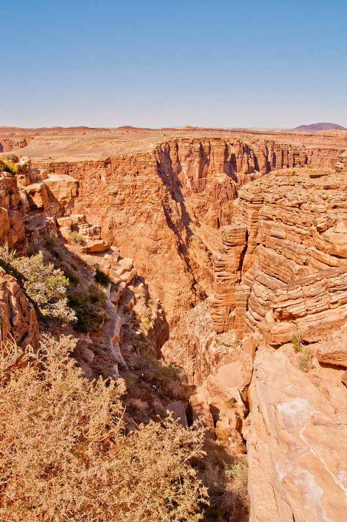 Looking down a gulley into the Little Colorado Gorge