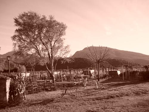 Casa de Doña Lupe vineyard, Baja California