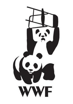 WWF Restling!
