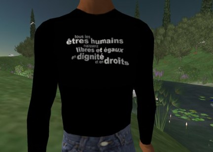 60th anniversary of the Universal Declaration of Human Rights in Ile Verte (Green Island in Second Life / The Associated Humans) - 60eme anniversaire de la Déclaration Universelle des Droits de l'Homme, Ile Verte, Second Life, Les Humains Associés, 2008