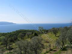 Panorama Alto Garda