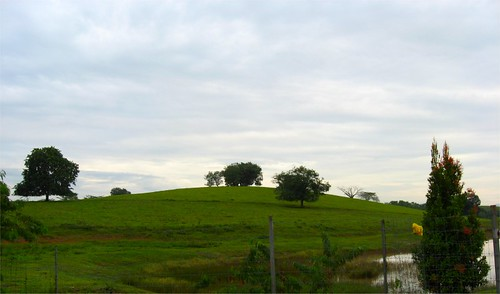 UPM Farm