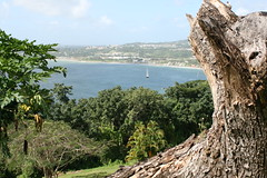 View from Fort King George