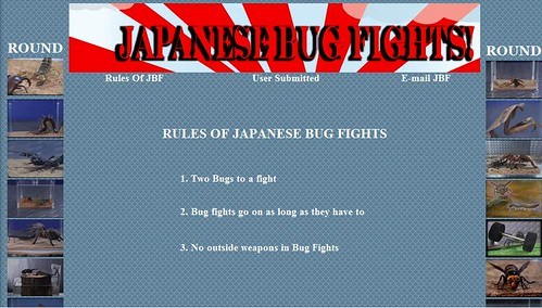 Japanese Bug Fights