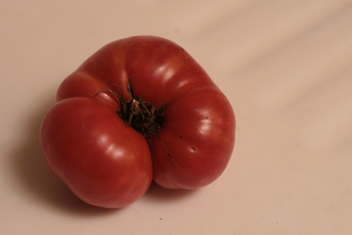 A farm heirloom tomato - in November!