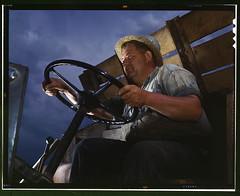 Truck driver at TVA's Douglas Dam, Tennessee (LOC)