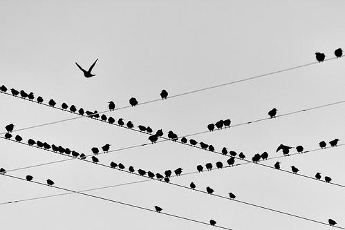 Flickriver: Manuel Atienzar's photos tagged with abigfave