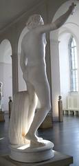 Hermaphrodit, Rückenansicht