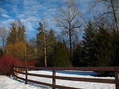 Bear Creek Park February 2008 068