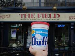 Fluff Fake Irish San Diego