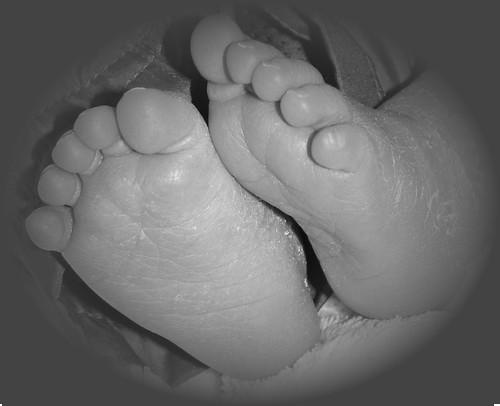 Tiny Toes 2