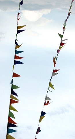 coloured pennants in SEP 201007