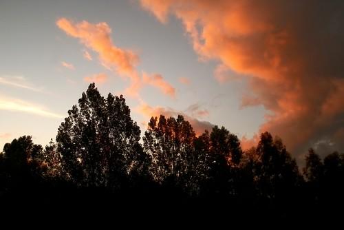 a december sunset