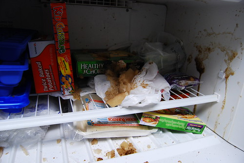 Work freezer mess
