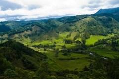 Sehr grünes Kolumbien