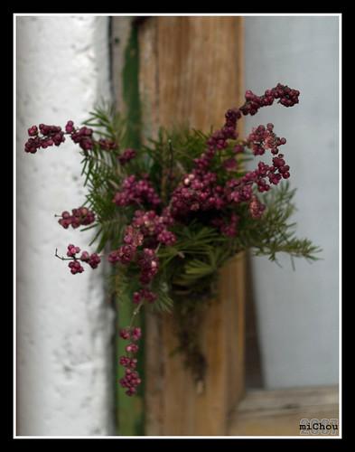 Flori în uşă