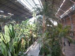 Jardin Atocha
