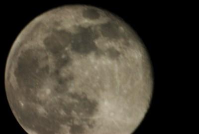 Hunters Moon 2x
