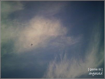 20080325_025.jpg