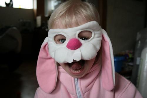 Kar�tas Bunny