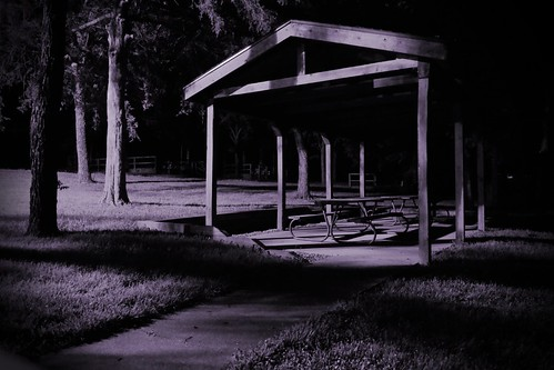nighttime picnic grounds