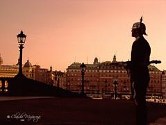 Royal Guard at Stockholm Palace